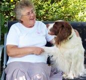 Dame und Hund Stockbild