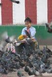 Dame, welche die Tauben speist lizenzfreies stockfoto
