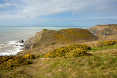 Damehole Point. View from Damehole Point Hartland looking towards Hartland Point lighthouse Devon Uk Royalty Free Stock Images