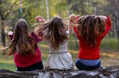 Damen, die auf Baumstamm im Wald sitzen Lizenzfreies Stockfoto