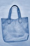 Damen Grey Handbag Lizenzfreie Stockbilder