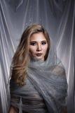 Damen i stjärnabakgrund med förhängegrå färgsilver blänker tygmummel royaltyfria foton
