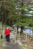 Damenwanderer am Tor auf Seeuferfußweg Cumbria stockfoto