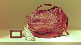 Damer handväska och halsduk Royaltyfri Foto