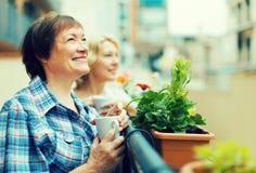 Dames âgées sur le balcon avec du café Photo stock