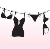 Damesslipje, bustehouder en lingerie Stock Foto