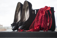 Damesslipjes en beurs 5 van vrouwenschoenen stock foto