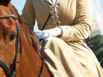 Dameszadel Royalty-vrije Stock Afbeelding