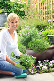 Dametuinman in de tuin stock fotografie