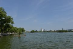 Daming Lake i Jinan arkivbild