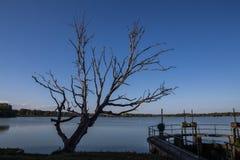 Damm av Dubnany Arkivfoto