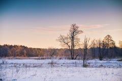 Damm an den Schneefällen in Irkutsk, Russland Sonnenaufgang am Wintermorgen Zieleinheit des Schnees landscape lizenzfreies stockfoto