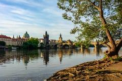 Damm des die Moldau-Flusses mit Blick auf Charles Bridge in Prag, Tschechische Republik Stockbilder