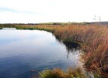 Damm för Ewen ` s, ursprungligt sötvattens- ekosystem Arkivbild