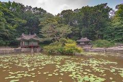 Damm hemlig trädgård av changdeokgungslotten royaltyfri fotografi