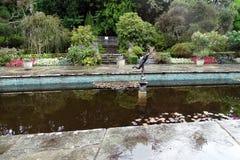 Damm i den italienska stilträdgården arkivfoto
