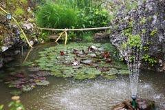 Damm i den japanska stilen Royaltyfria Foton