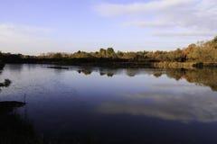 Damm i höst med soluppgång över bakgrund av djupfryst vatten, träd i November färger med blå himmel och moln royaltyfri fotografi