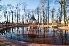 Damm i parken Arkivbild