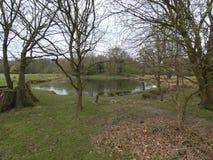 Damm i skogen i England royaltyfri foto