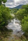Damm med bergbakgrund Royaltyfria Foton
