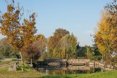 Damm med bron Royaltyfria Foton