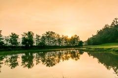 Damm med reflexion av skogen och soluppgång Royaltyfri Fotografi