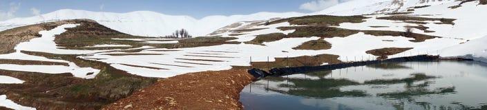 Damm med vatten royaltyfri foto