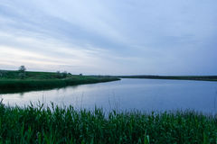Damm nära Arkivbild
