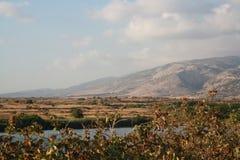 Damm nära Dafna ängar Royaltyfri Fotografi