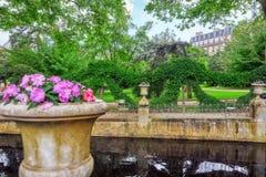 Damm nära den Medici springbrunnen i Luxembourg Palase royaltyfria bilder