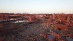 Damm och skog n?ra Lugovaya Lobnia, Moskvaregion ovanf?r sikt arkivfilmer