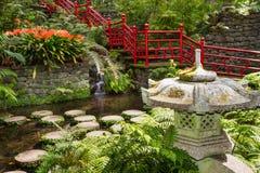 Damm- och trädgårdgarnering i orientalisk stil trädgårds- tropisk monteslott Funchal Portugal Arkivfoto