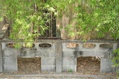 Damm på lantgården för krokodiler Royaltyfria Bilder