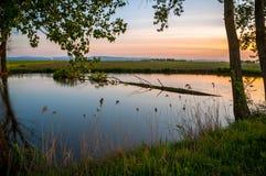 Damm på solnedgången Royaltyfria Foton