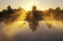 Damm på soluppgången med morgonmist royaltyfri foto
