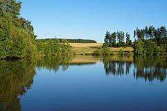 Damm som omges av träd Arkivfoton