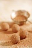 Dammat av pulver för kakao för chokladtryfflar och sikt Fotografering för Bildbyråer