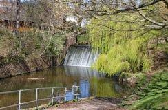 Dammbyggnaden på floden Sid i Sidmouth, Devon i parklandområdet som är bekant som Byesen fotografering för bildbyråer