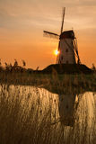 Damme-Windmühle in Belgien Stockfotos