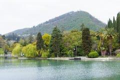 Dammet i ett härligt parkerar Arkivfoto