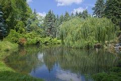 Dammet i staden parkerar Royaltyfri Fotografi