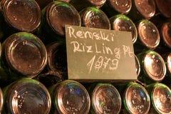 Dammiga gamla vinflaskor som staplas i vinkällaren Royaltyfria Foton