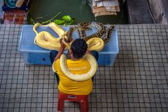 Local salesman offers pictures with a python to tourists in Thailand. Damnoen Saduak, Thailand - April 1, 2018 : Local salesman offers pictures with a python to Royalty Free Stock Images