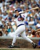 Damon Berryhill. Chicago Cubs catcher Damon Berryhill. (Image taken from color slide Stock Image