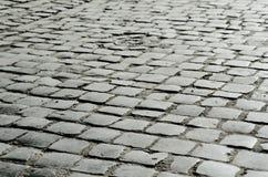 Damp cobble-stone Royalty Free Stock Photo