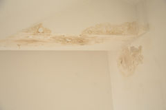 Damp falling plaster Stock Images