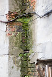 Damp and old walls of the building Royalty Free Stock Photos