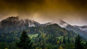 Dampf, der von den Bergen steigt stock video footage