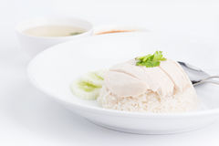 Dampf-Huhn mit Reis stockfotos